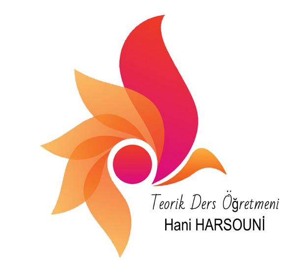 المهندس هاني حرصوني 05346218508